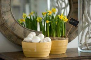 Easter Bulbs