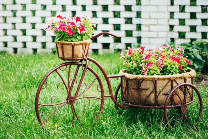 Decor Your Backyard