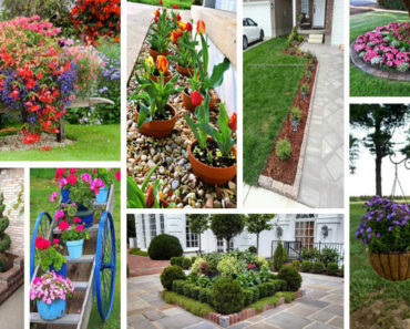 Front Garden and Landscaping Projects